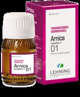 Lehning Arnica Complexe N° 1 Solution Buvable En Gouttes Fl/30ml à VILLERS-LE-LAC