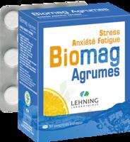 Lehning Biomag Comprimés à Croquer Agrumes B/90 à VILLERS-LE-LAC