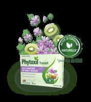 Phytoxil Transit Comprimés B/20 à VILLERS-LE-LAC