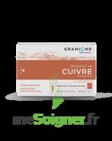 Granions De Cuivre 0,3 Mg/2 Ml S Buv 30amp/2ml à VILLERS-LE-LAC