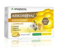 Arkoroyal Propolis Pastilles Adoucissante Gorge Guimauve Miel Citron B/24 à VILLERS-LE-LAC