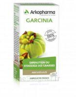 Arkogélules Garcinia Gélules Fl/45 à VILLERS-LE-LAC