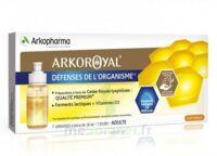 Arkoroyal Défenses Naturelles Gelée Adulte 7 Doses/10ml à VILLERS-LE-LAC
