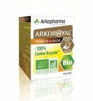 Arkoroyal 100% Gelée Royale Bio Gelée Pot/40g à VILLERS-LE-LAC