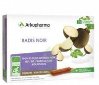 Arkofluide Bio Ultraextract Radis noir Solution buvable 20 Ampoules/10ml à VILLERS-LE-LAC