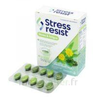 Stress Resist Comprimés Stress & fatigue B/30 à VILLERS-LE-LAC