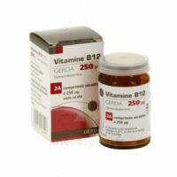 Vitamine B12 Gerda 250 Microgrammes, Comprimé Sécable à VILLERS-LE-LAC