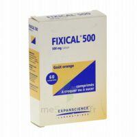 Fixical 500 Mg, Comprimé à Croquer Ou à Sucer à VILLERS-LE-LAC