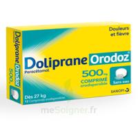 Dolipraneorodoz 500 Mg, Comprimé Orodispersible à VILLERS-LE-LAC