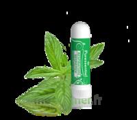 Puressentiel Respiratoire Inhaleur Respiratoire Aux 19 Huiles Essentielles - 1 Ml à VILLERS-LE-LAC