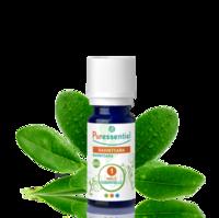 Puressentiel Huiles essentielles - HEBBD Ravintsara BIO* - 5 ml à VILLERS-LE-LAC