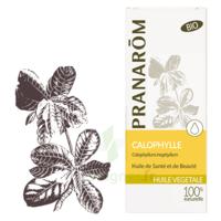 Pranarom Huile Végétale Bio Calophylle 50ml à VILLERS-LE-LAC