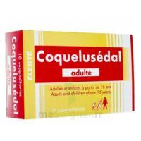 COQUELUSEDAL ADULTES, suppositoire à VILLERS-LE-LAC
