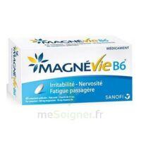 Magnevie B6 100 Mg/10 Mg Comprimés Pelliculés Plaq/60 à VILLERS-LE-LAC