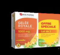 Forte Pharma Gelée Royale 1000 Mg Solution Buvable 2*b/20 Ampoules/10ml à VILLERS-LE-LAC