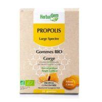 Herbalgem Propolis Large Spectre Gomme Bio B/24 à VILLERS-LE-LAC