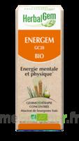 Herbalgem Energem Solution buvable bio Fl cpte-gttes/30ml à VILLERS-LE-LAC