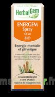 Herbalgem Energem Solution buvable bio Spray/15ml à VILLERS-LE-LAC