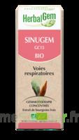 Herbalgem Sinugem Solution buvable bio Spray/15ml à VILLERS-LE-LAC