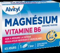 Govital Magnésium Vitamine B6 Comprimés B/45 à VILLERS-LE-LAC