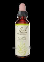 Fleurs De Bach® Original Olive - 20 Ml à VILLERS-LE-LAC