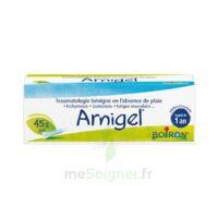 Boiron Arnigel Gel T(alumino-plastique)/45g à VILLERS-LE-LAC