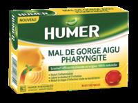 Humer Pharyngite Past Mal De Gorge Baies Sauvages à VILLERS-LE-LAC